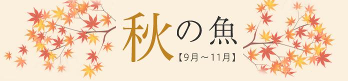 秋の魚【9月〜11月】